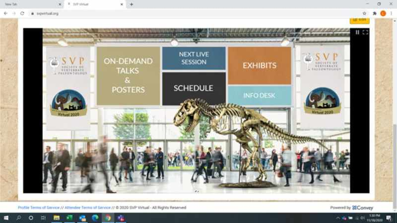 SVP's 2020 Annual Meeting Virtual Lobby